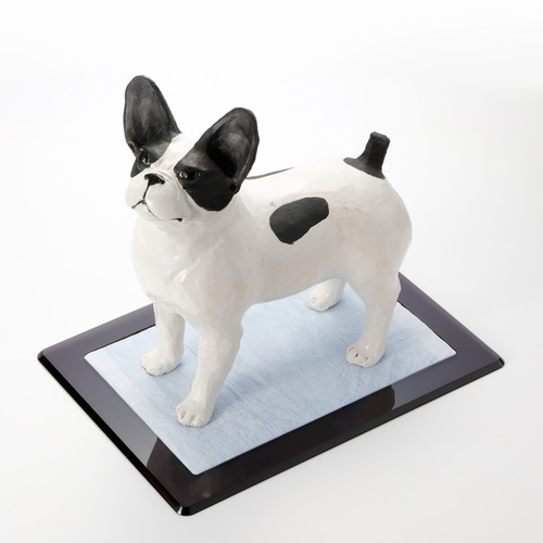 デザイン会社がつくった・アクリル犬用トイレ「Flat」1